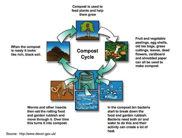 Composting - composting cycle