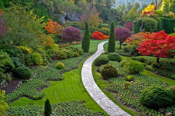 How to shape a garden - beautiful garden