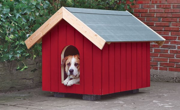 Two Dog Dog House Plans