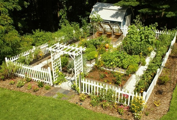 Best gardening software - Handyman tips