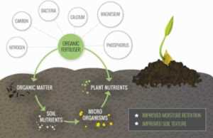Organic fertilizers - circulation