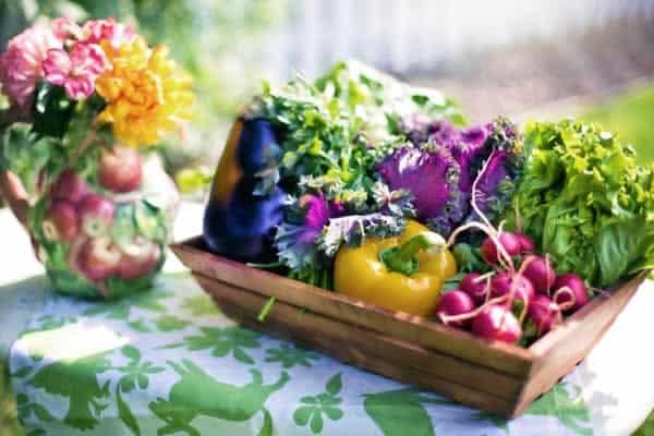 Essential Tips for Beginners in Vegetable Gardening - veggies