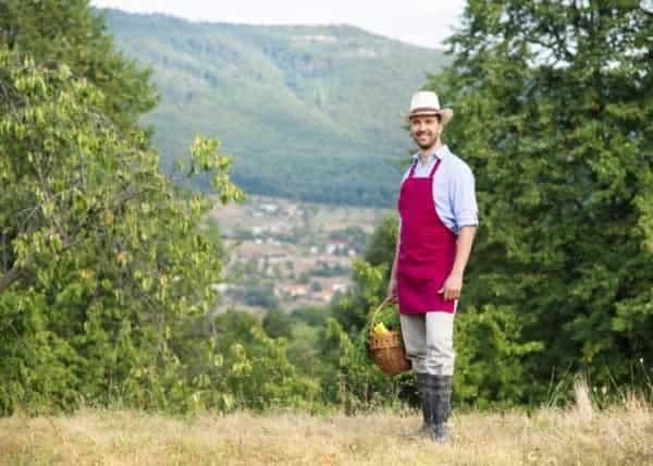 Essential Tips for Beginners in Vegetable Gardening