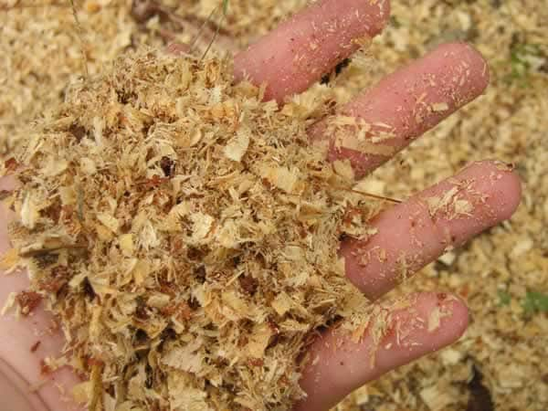 How to reuse sawdust