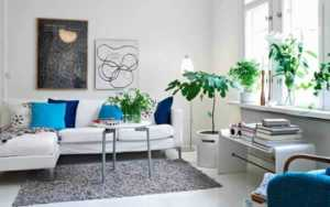 how-to-redesign-living-room-on-a-budget-plants