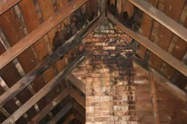 Water damage - attic