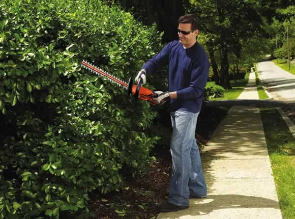 Garden power tools - hedge trimmer