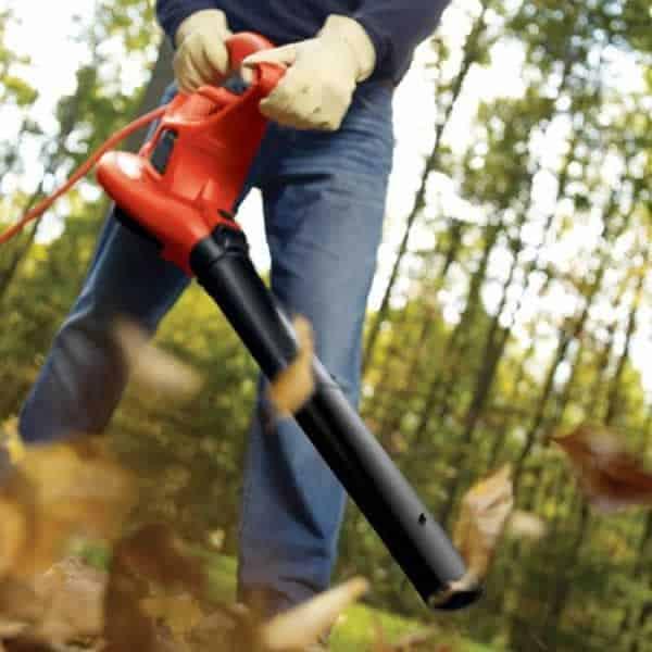 Garden power tools - leaf blower