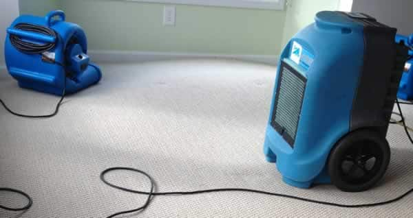 What to do after water damage in your home