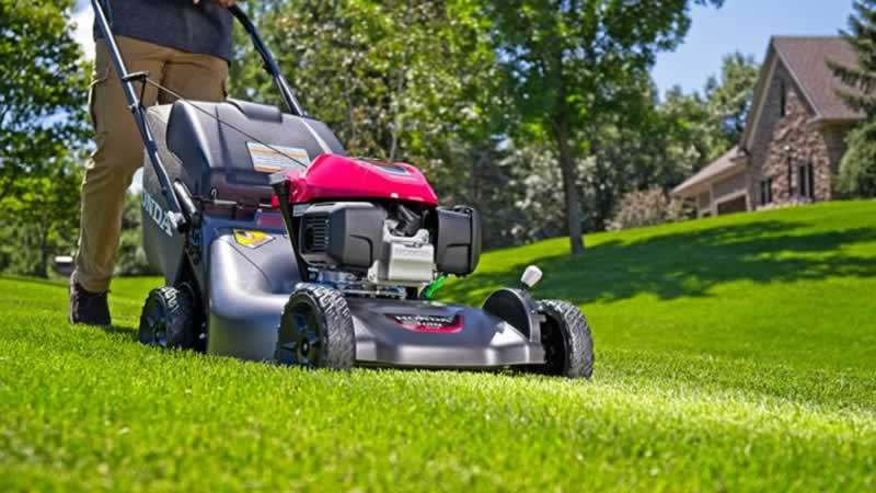 Lawn mower buying guide - lawn mower