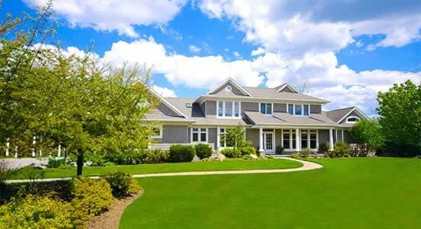 Lawn maintenance tips - perfect lawn