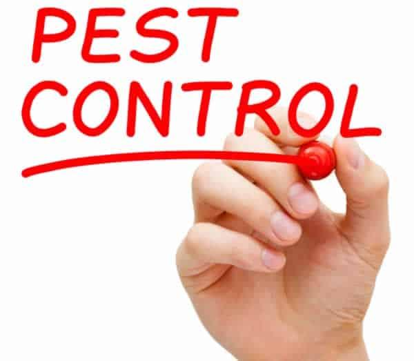Pest control tools