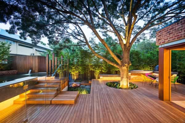 Turn your backyard into starlight sanctuary