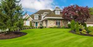 Handy tips for maintaining your garden - beautiful lawn