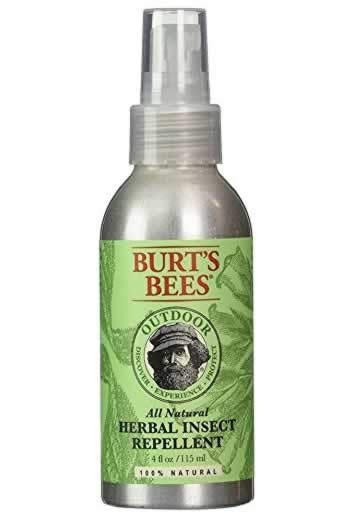 Effective ways to get rid of bees on your backyard - herbal bee repellent