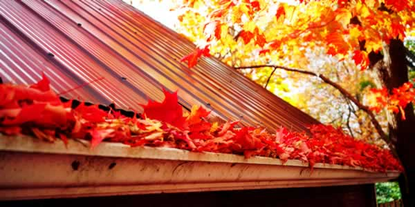 How to clean your clogged gutters safely