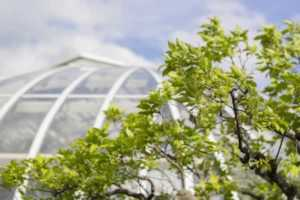 How to keep your garden conservatory up to date