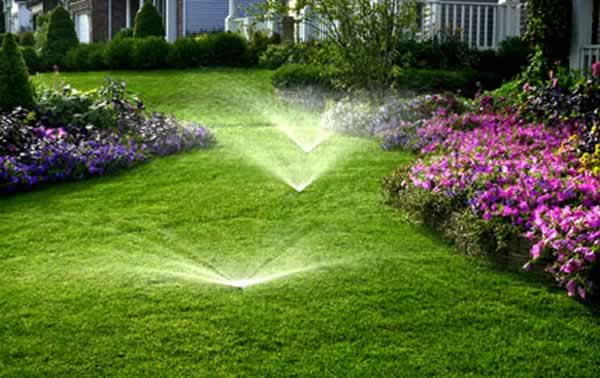 How to take care on your yard - watering system