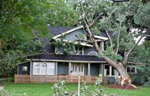 Property damage insurance claim form