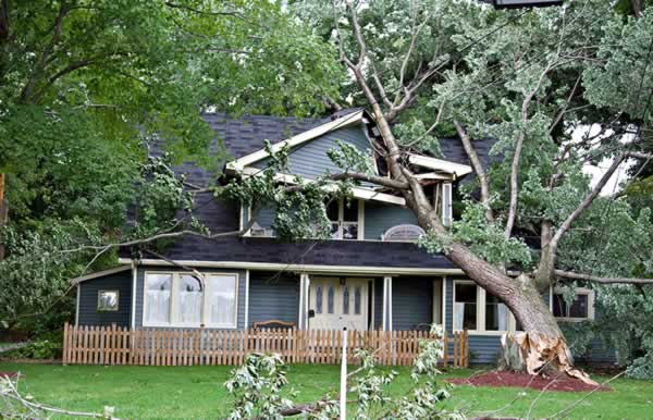 Property damage insurance claim form