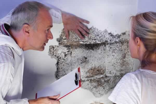 Protect your family from mold exposure