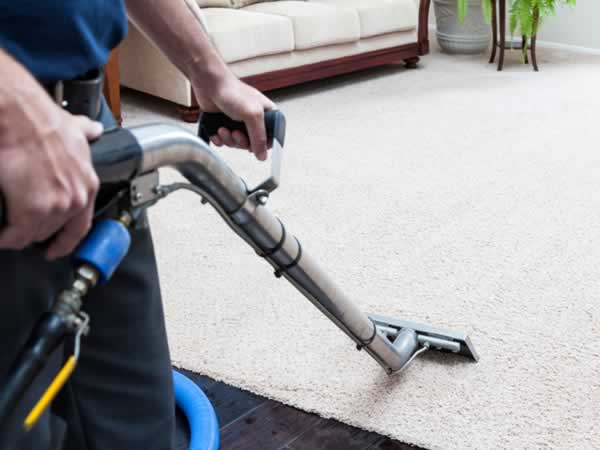 How to find the best carpet cleaner in Arizona - cleaner