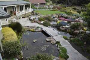 Own a Koi Pond on your Property