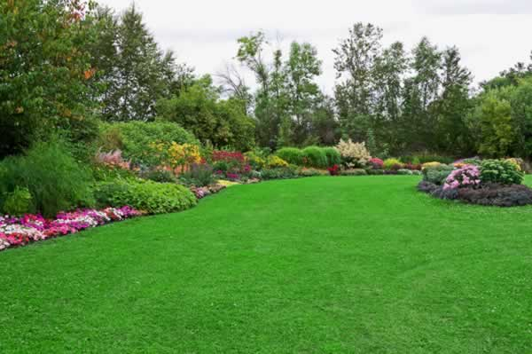 Pointers to properly maintain your lawn - beautiful lawn