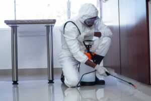 pest control services for commercial buildings