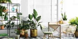 High Indoor Air Quality - 5 Essential Tools