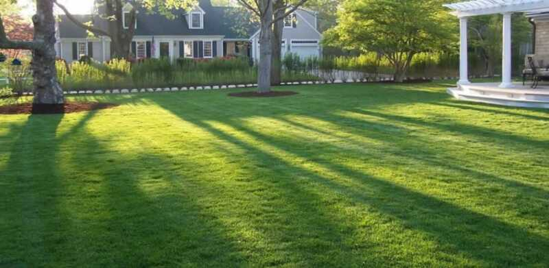 Hiring A Lawn Care Professional In 4 Easy Steps