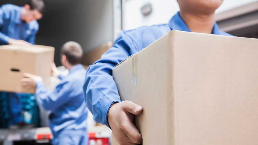 Professional Movers vs Moving Containers - professional movers