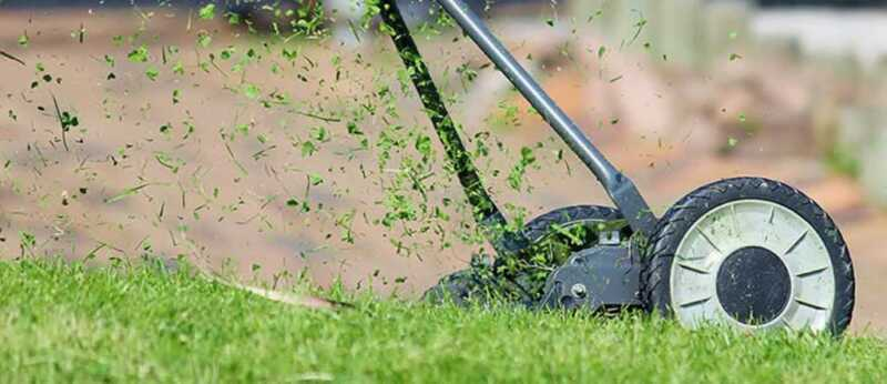 The Ultimate Guide in Scarifying Your Lawn