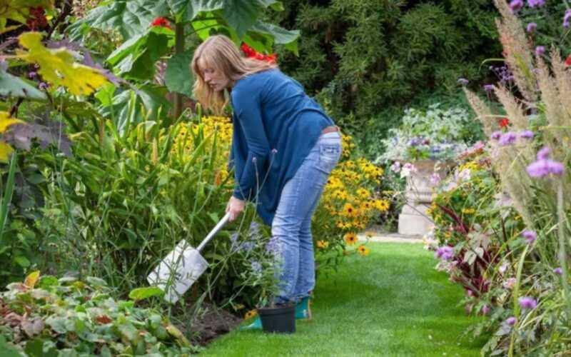 Tips to keeping up with your home and garden