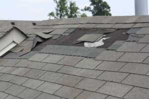 Signs that your roof is in need of repair