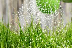 18 unusual tips to save water at home - sprinklers