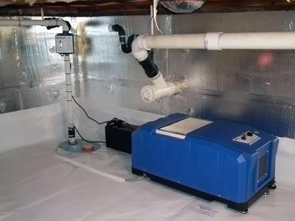Basement Dehumidifiers Help Relieve Allergies