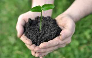 Easy Tips to Make Compost for Your Garden