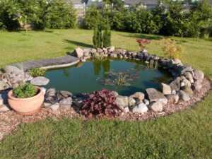 Water Pond Maintenance