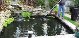 Water Pond Maintenance - pond maintenance