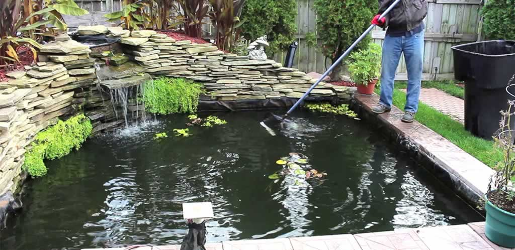 Water Pond Maintenance - pond maintenance