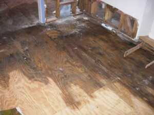 Consequences of Delaying Water Damage Repairs