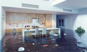 Tips to Finding Water Damage Professionals in Asheville NC