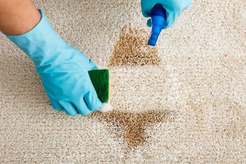 5 tips to budgeting for having your rugs cleaned - cleaning with sponge