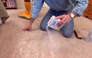 Rug Cleaning - washing rug
