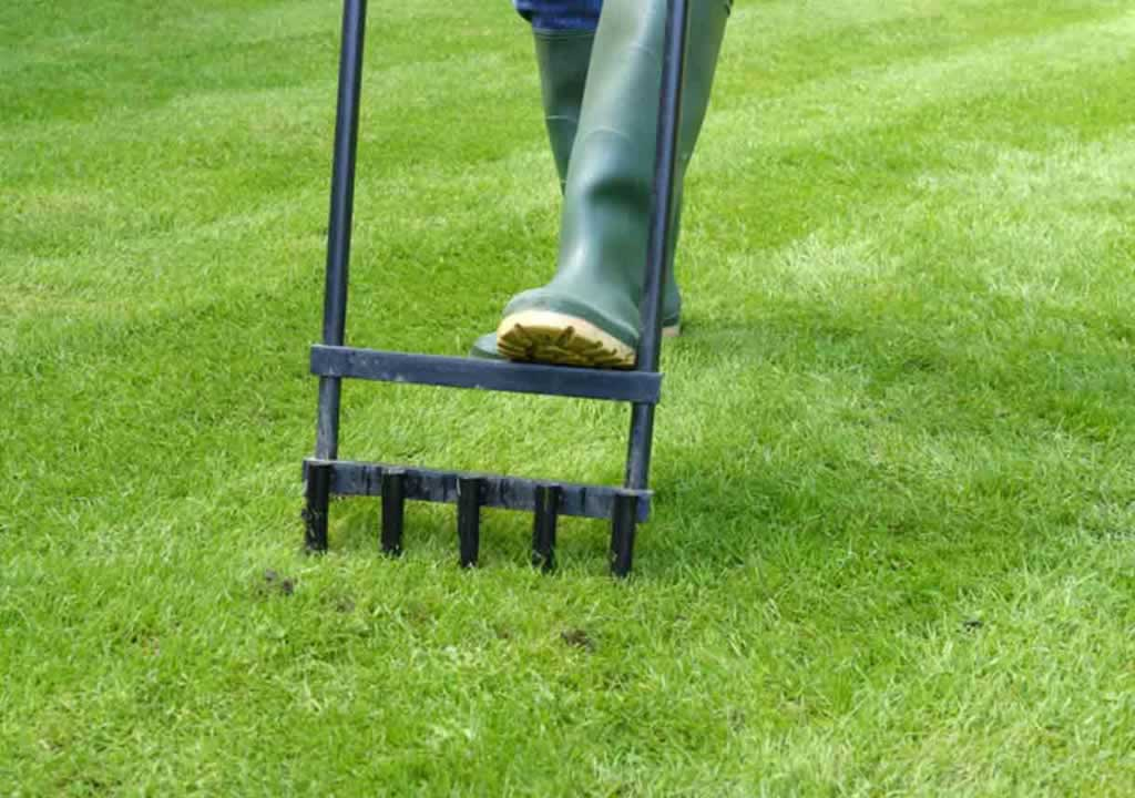 Things You Need To Do To Prepare Your Lawn For Spring