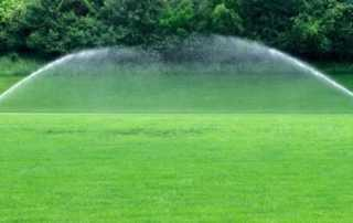 Things you need to do to prepare your lawn for spring - watering