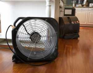 5 tips to drying hardwood floors - dehumidifier