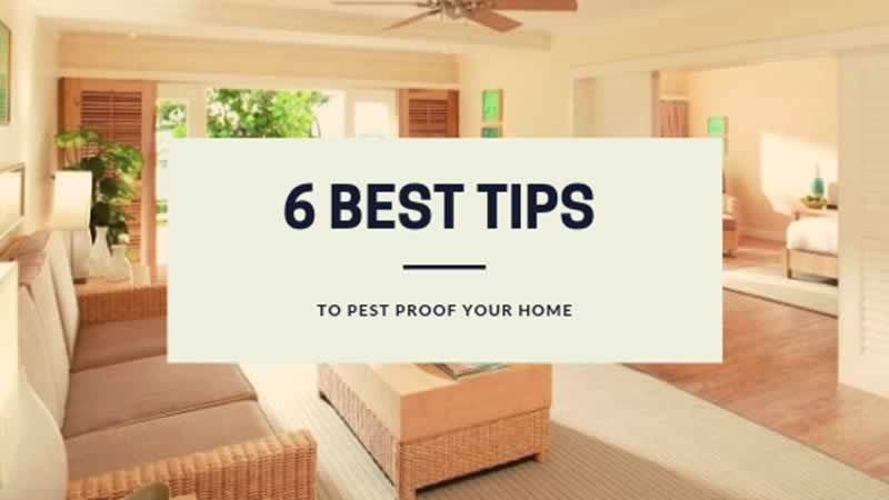 Best tips to Pest Proof your Home