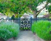 Quick and easy wins for transforming your garden - fence gate